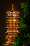 The Gold Pagoda on Mulong Lake Photographic Print by Peter Carsten