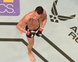 UFC 181 - Hendricks v Lawler Photo by Josh Hedges
