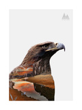Eagle Giclee Print by  PhotoINC