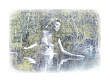 Swan Lake Giclee Print by  PhotoINC