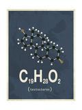 Molecule Testosterone Giclée-tryk