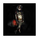 Robo Nice Giclee Print