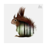 Squirrel Giclee Print