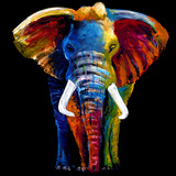 Great Elephant Giclee Print by Clara Summer