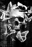 Skull Butterfly Crown Giclee Print