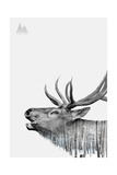 Deer Giclee Print by  PhotoINC