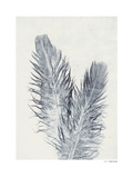 Feather Prints by Pernille Folcarelli