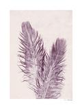 Feather Reproduction procédé giclée par Pernille Folcarelli