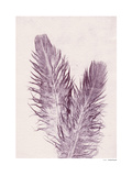Feather Giclee Print by Pernille Folcarelli