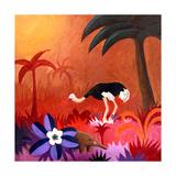 Ostrich Prints