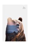 Bear Giclee Print