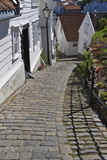 Steep Cobbled Street and White Wooden Houses Photographic Print by Eleanor Scriven
