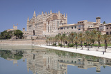 Cathedral of Santa Maria of Palma (La Seu) and Almudaina Palace at Parc De La Mar Photographic Print by Markus Lange