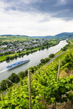 Cruise Ship Passing a Vineyard at Muehlheim, Moselle Valley, Rhineland-Palatinate, Germany, Europe Photographic Print by Michael Runkel
