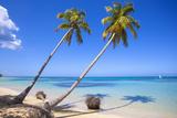 El Portillo Beach, Las Terrenas, Samana Peninsula, Dominican Republic, West Indies, Caribbean Photographie par Jane Sweeney