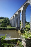 Calstock Railway Viaduct, Tamar Valley, Cornwall, England, United Kingdom, Europe Photographic Print by Rob Cousins