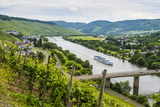 Cruise Ship Passing the Vineyard Near Lieser in the Moselle Valley, Rhineland-Palatinate, Germany Photographic Print by Michael Runkel