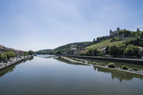 Fortress Marienberg over the Main, Wuerzburg, Franconia, Bavaria, Germany Photographic Print by Michael Runkel