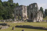 Roche Abbey, South Yorkshire, Yorkshire, England, United Kingdom, Europe Photographic Print by Rolf Richardson