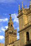 Seville Cathedral, Seville, UNESCO World Heritage Site, Andalucia, Spain, Europe Photographic Print by Neil Farrin