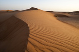 Wahiba Sands Desert, Oman, Middle East Photographic Print by Sergio Pitamitz
