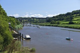 Calstock Railway Viaduct over the River Tamar, Cornwall, England, United Kingdom, Europe Photographic Print by Rob Cousins