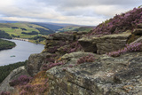 Bamford Edge with Heather Above Ladybower and Ashopton Bridge at Dawn Photographic Print by Eleanor Scriven