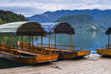 Pletna Rowing Boats, Lake Bled, Bled, Gorenjska, Upper Carniola Region, Slovenia, Europe Photographic Print by Matthew Williams-Ellis