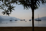 Sailboats Framed by Tree, Marmaris, Anatolia, Turkey, Asia Minor, Eurasia Photographic Print by Frank Fell