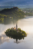 Lake Bled Island and Bled Castle at Sunrise, Julian Alps, Gorenjska, Slovenia, Europe Photographic Print by Matthew Williams-Ellis