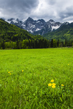 Juilan Alps Just Outside Kranjska Gora, Triglav National Park, Upper Carniola, Slovenia, Europe Photographic Print by Matthew Williams-Ellis