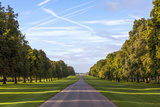 The Long Walk, Windsor, Berkshire, England, United Kingdom, Europe Photographic Print by Charlie Harding