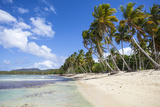 Playa Rincon, Samana Peninsula, Dominican Republic, West Indies, Caribbean, Central America Photographic Print by Jane Sweeney