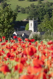 Poppy Field and St. Andrew's Church, Naunton, Cotswolds, Gloucestershire, England Photographic Print by Stuart Black