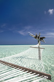 Hammock in Tropical Lagoon, Maldives, Indian Ocean, Asia Photographic Print by Sakis Papadopoulos