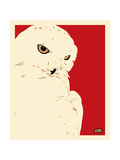 Snowy Owl Prints by Billy Perkins