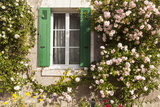 Julian Elliott - Roses Cover a House in the Village of Chedigny, Indre-Et-Loire, Centre, France, Europe Fotografická reprodukce