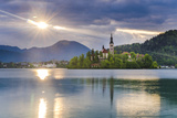Lake Bled at Sunrise with the Church on Lake Bled Island, Gorenjska Region, Slovenia, Europe Photographic Print by Matthew Williams-Ellis