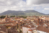 The Rooftops of the Historic Centre of Lucca, Tuscany, Italy, Europe Photographic Print by Julian Elliott