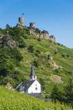 Castel Thurant Above Alken, Moselle Valley, Rhineland-Palatinate, Germany, Europe Photographic Print by Michael Runkel