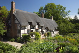 Anne Hathaway's Cottage, Stratford-Upon-Avon, Warwickshire, England, United Kingdom, Europe Photographic Print by Stuart Black