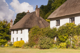 Thatched Cottages in Milton Abbas, Dorset, England, United Kingdom, Europe Photographic Print by Julian Elliott