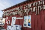 View of the Small Village of Vellholmen, Smola Island, Norway, Scandinavia, Europe Photographic Print by Michael Nolan