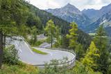 Majola Pass, 1185 M, St. Moritz, Engadin, Graubunden, Swiss Alps, Switzerland, Europe Photographic Print by Karl Thomas