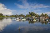 Laguna Del Cura, Punta Gorda, Cienfuegos, Cienfuegos Province, Cuba, West Indies, Caribbean Photographic Print by Jane Sweeney
