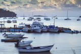 View of Harbour at Dawn Photographic Print by Jane Sweeney