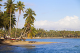 Beach at Las Terrenas, Samana Peninsula, Dominican Republic, West Indies, Caribbean Photographic Print by Jane Sweeney