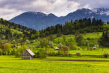 Typical Slovenian Landscape Between Lake Bled and Lake Bohinj Photographic Print by Matthew Williams-Ellis