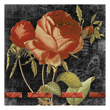 Vintage Floral 2 Prints by Carole Stevens