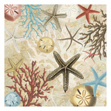 Coral Menagerie 1 Prints by Carole Stevens